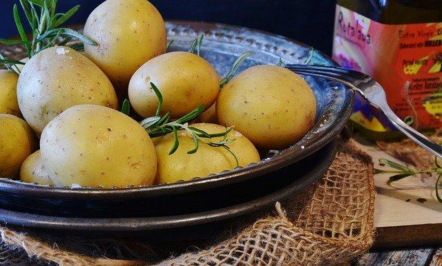 Ziemniaki były wykorzystywane także w medycynie ludowej, fot. Pixabay.com